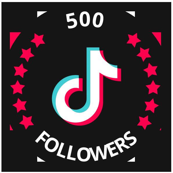 tiktok 500 followers
