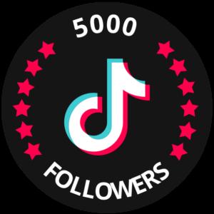 5000 followers tiktok